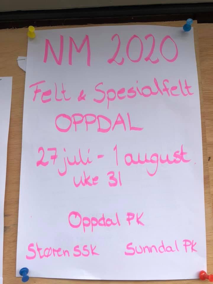 NM felt 2020